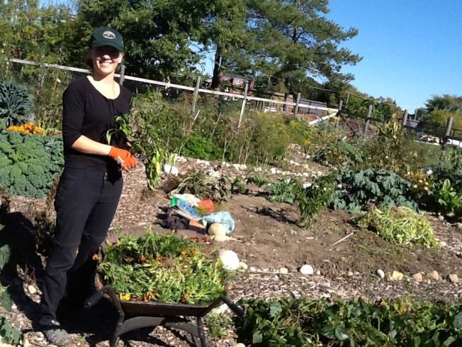 Guelph Street Garden Fall Clean UP