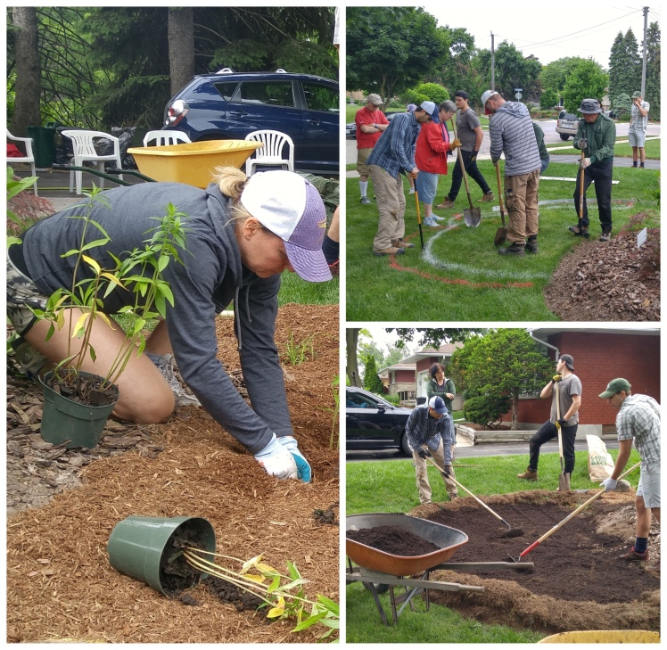 Volunteers helping build a rain garden in Lakeside, Carolyn from Mount Hope on the left)